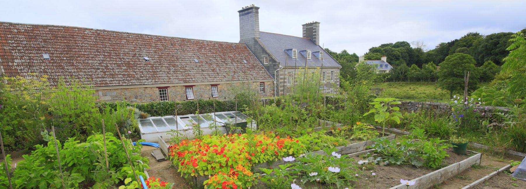 Walled Garden - Tony